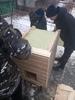 Как изготовить конуру для собаки
